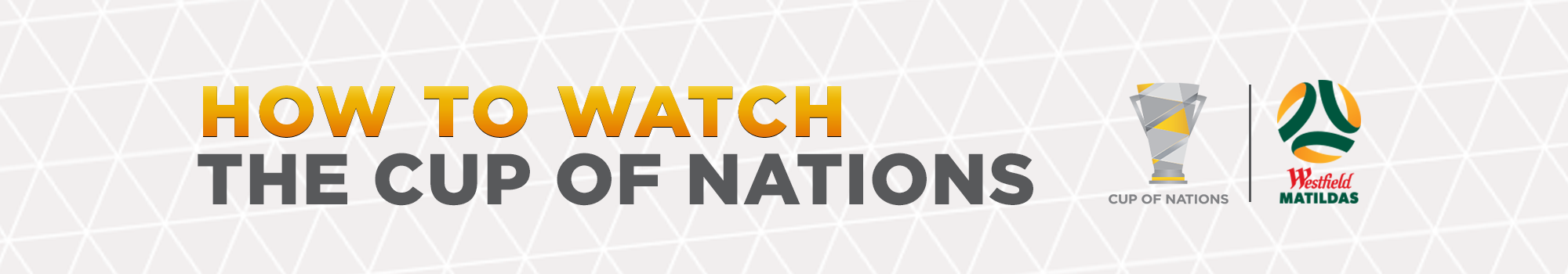HowtoWatchCupofNations Banner