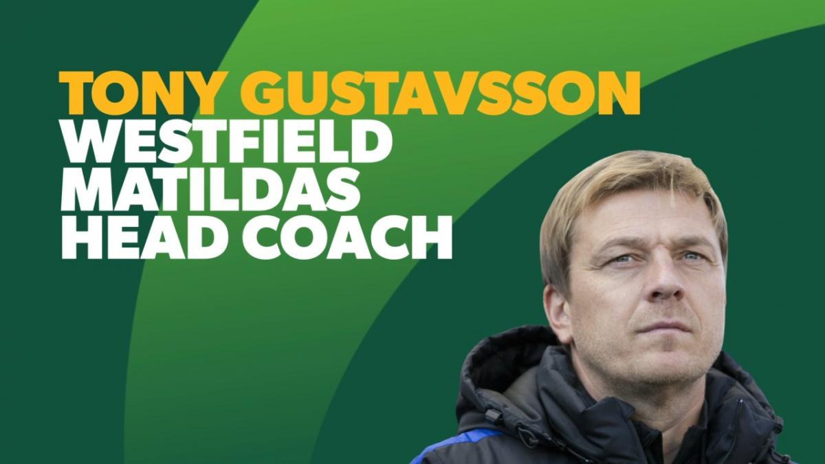 Tony Gustavsson's Coaching History